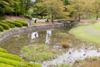 Splash Pond