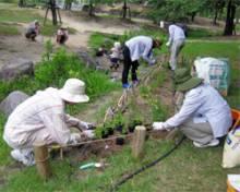 join_volunteer_hanaippai2
