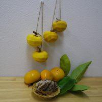 富有柿の干し柿とスライスチップづくり(要予約)