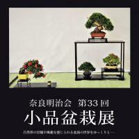 【開催中止】 奈良明治会 第33回小品盆栽展